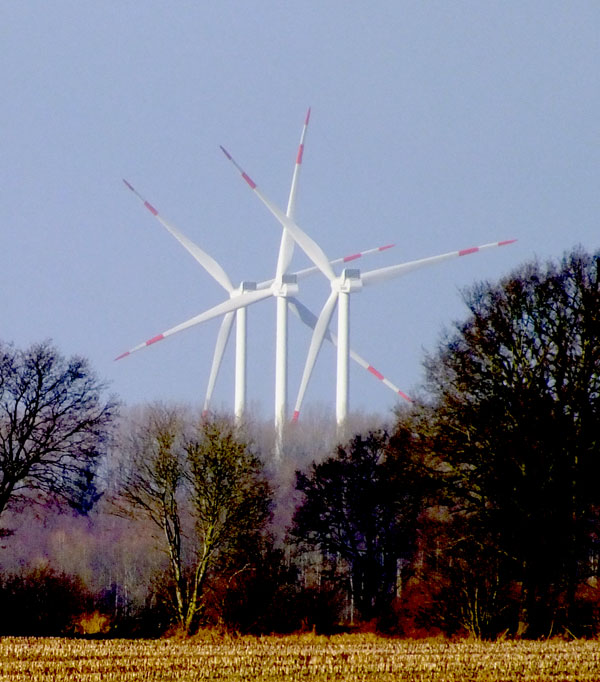 Die Windpotentialunsicherheit an Standorten auf bewaldeten Hügeln ist deutlich höher als beispielsweise im Flachland oder an den Küsten. / Foto: HB