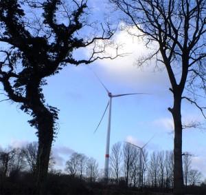 Bürgermeister diskutiert mit mehr als 200 Teilnehmern über die Windkraftplanung im Reichswald / Foto: HB