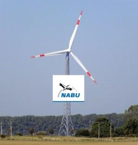 Windkraftprojekte in der Nähe von sensiblen Vogelvorkommen müssen ab sofort verlässlicher geplant werden können. Foto: HB
