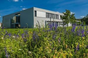 Blick zum Peter-Dierich-Haus Foto: Peter Hennig