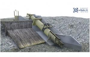 Hydroconnect entwickelte und patentierte den weltweit ersten Fisch-Lift, der die Fisch-Durchgängigkeit bei Wasserkraftwerken effizienter als je zuvor ermöglicht und noch dazu Energie erzeugt. / Pressebild