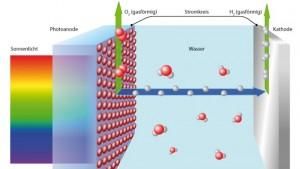 Künstliche Photosynthese gilt als vielversprechende Idee, um saubere Energie aus Sonnenlicht zu gewinnen. Dabei wird Wasser photoelektrochemisch in seine Bestandteile H₂ und O₂ aufgetrennt und gespeichert. Bei der späteren Vereinigung der chemischen Elemente in einer Brennstoffzelle entsteht elektrischer Strom. PB: Empa