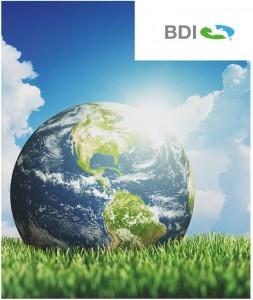 http://www.bdi-bioenergy.com/