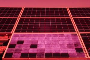 Potentialinduzierte Degradation (PID) – hier sichtbar durch Elektrolumineszenz-Test / Pressebild