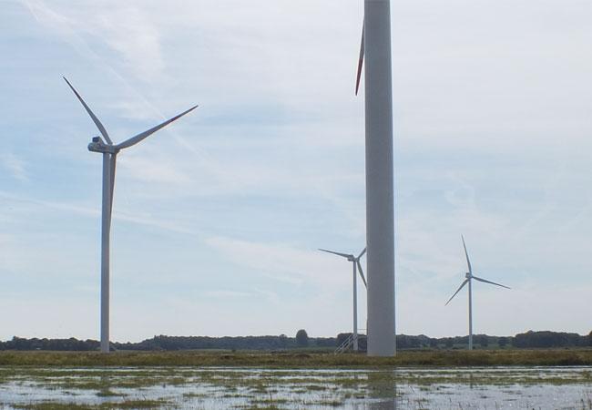 Windkraft: Großartige Chance für Mecklenburg-Vorpommern / Foto: HB