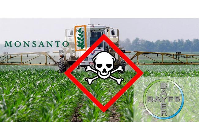 Fusion von Bayer-Monsanto stoppen! / Pressebild