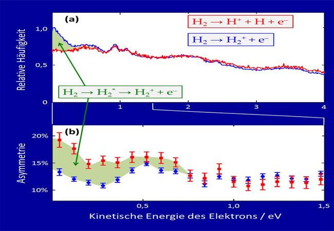 Abb. 2: (a) Elektronenspektrum für gebundene (blau) und dissoziative (rot) Ionisation von H2. (b) Links-Rechts-Asymmetrie der Elektronen. Grün schattiert: Beitrag der Autoionisation. / Grafik: MPI für Kernphysik
