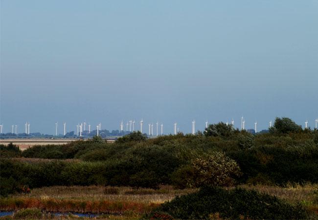 Tausende Windräder stehen in Schleswig-Holstein und es werden jährlich mehr, ohne dass der Strom abgenommen werden kann, folglich werden immer mehr Winräder abgeschaltet. Grüne Politik für die Windlobby / Foto: HB