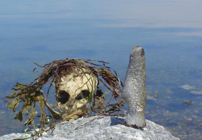 Nicht noch mehr Todeszonen in Süßgewässern und Meeren / Foto: HB