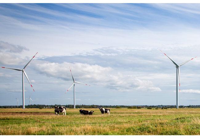 Siemens liefert drei Direct-Drive-Windturbinen mit einem Rotordurchmesser von 113 Metern und einer Nennleistung von je 3,2 Megawatt für den Windpark Naundorf, der zwischen Dresden und Leipzig liegt. / Pressebild: Siemens