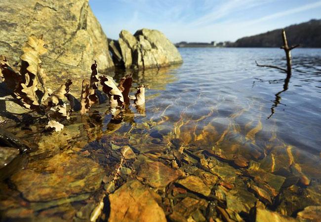 Die Rappbodetalsperre im Harz ist eine von 36 Talsperren in Deutschland, die UFZ-Wissenschaftler unter die Lupe genommen haben, um den Ursachen auf die Spur zu kommen. / presssebild: UFZ / André Künzelmann