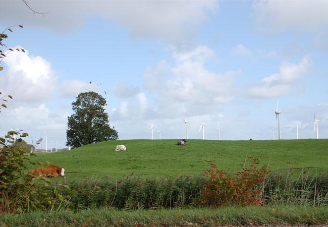 295 Millionen Euro für die Windstromabschaltung nur im Jahr 2015 / Foto: HB