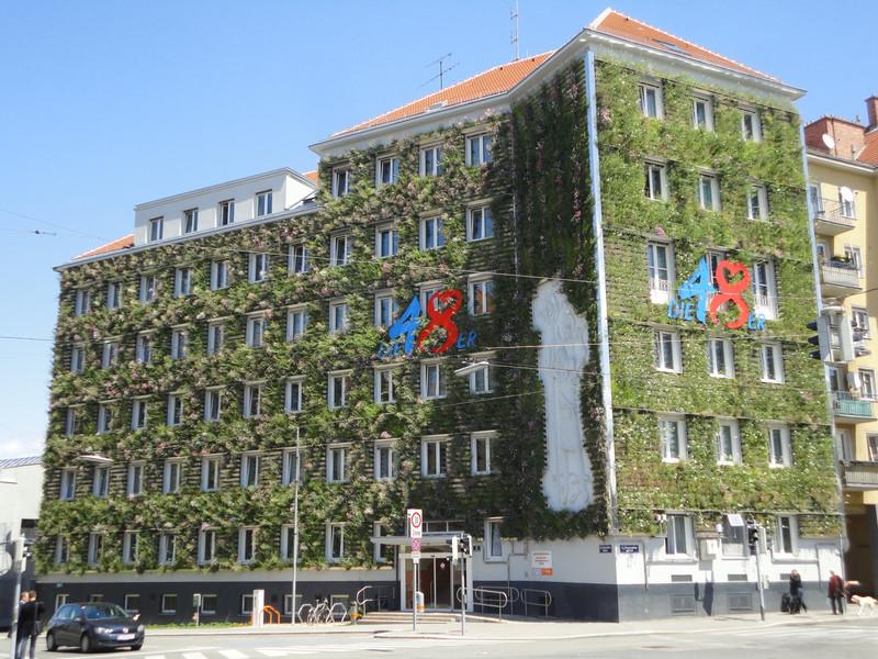 Häufig Grüne Fassaden: Pflanzen als Schutz vor der Sommerhitze TZ89